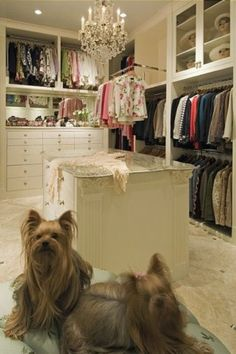 Cute Yorkies make any closet better! Her dressing room by Mary Anne Smiley Interiors Dallas TX Pull down clothes rods maximize space in this elegant closet