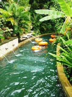 Waterbom Bali (Kuta, Indonesia) on TripAdvisor: