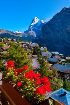 Murren, in the Swiss Alps, with the Eiger behind, Canton Bern, Switzerland Places Around The World, The Places Youll Go, Places To See, Around The Worlds, Wonderful Places, Beautiful Places, Zurich, Swiss Alps, Vacation Spots