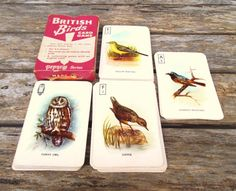 British Birds Card Game. Pepys Series. 1960's by VintageLoulabelle