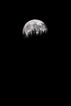 www.Filson.com | Searching the Night Sky with Photographer Daniel McVey.