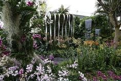 Chelsea flower show 2015 – in pictures