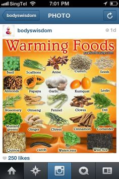 Traditional Chinese Warming Foods
