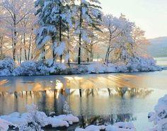 Зимняя природа. #зима #winter