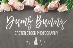 Dumb Bunny Easter St