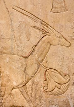 Gazelle in Ankhhors tomb at Luxor.
