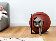 Cube Cat House | Netfloor USA