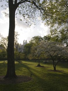 Looking to get away from the city life? Look no further than your own backyard. Piedmont Park is a green getaway for all Atlantans.
