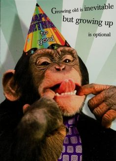 Happy Birthday to the Monkey in my life... PARIS!!! Let's Celebrate!!! Happy Friday and Have A Great Day!!!! ~4/10/2015~
