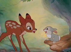Bambi and Thumper meet Disney Pixar, Walt Disney, Disney Films, Cute Disney, Disney Cartoons, Disney Animation, Disney Magic, Disney Art, Disney Sidekicks