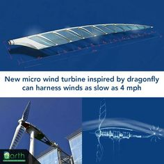 Bio-mimicry in sustainable energy inspired by dragonfly