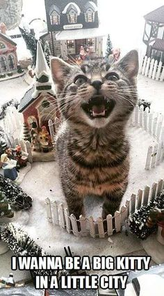 """This is like my cats in the village under the Christmas tree!  We left them a """"meadow"""" in the back, but they still go Godzilla through the village to get to it."""