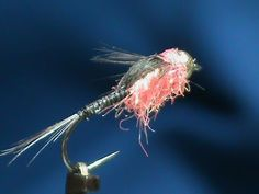 Attractive tungsten UV White Nymph Pink tagged Wet Fly Trout and Grayling x3