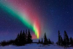 Aurora Over The Trees Of Churchill ~ Manitoba, Canada I know I have two different locations for this pin. I'm not exactly sure where in Canada I would go to see the aurora borealis 😃 Beautiful World, Beautiful Places, Beautiful Pictures, Beautiful Images Of Nature, Photos Of Nature, Nature Pictures, Beautiful Paintings Of Nature, Calming Pictures, Magical Images