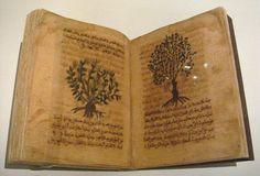pharmaco:  Dioscorides, De Materia Medica in Arabic, Spain, 12th-13th century
