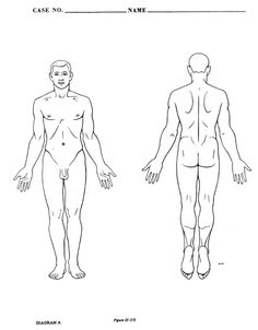 Blank picture of a human | human body outline. blank human body ...