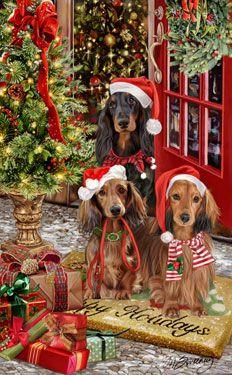 --Longhair Dachshund Christmas Greetings