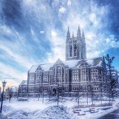Boston College College Soccer, Boston College, Alma Mater, Catholic, Building, Travel, Seasons, Education, Photos