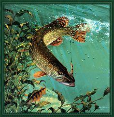 Живопись: сокровища подводного мира p-susinno06