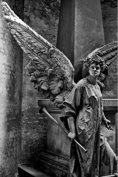 Statues Aesthetic Funny - - Two Angel Statues - Statues Art Neon - Gothic Statues Medieval - Cemetery Angels, Cemetery Statues, Cemetery Art, Sculpture Art, Sculptures, Greek Statues, Ange Demon, Chef D Oeuvre, Fantasy Kunst