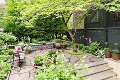 A dogwood shades the terrace; the garden was created by Christina Michas Landscape Design.