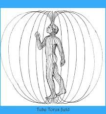 Bildergebnis für heilige geometrie spirale thorus kundalini