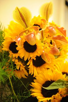Sunflowers & Ladyslippers