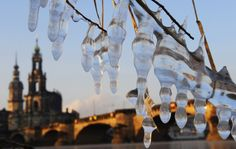 = News In Pictures – Extreme cold weather hits Europe Icicles hang on the branches of a bush on the banks of the River Elbe in Dresden, Germany on February (Norbert Millauer / DAPD / Associated Press) Dresden Germany, Homeless People, Cold Temperature, Winter Wonder, Eastern Europe, Cold Weather, Cool Pictures, Beautiful Pictures, At Least