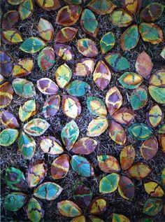 beech leaves. Tim Pugh.