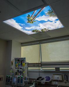 Hospital CCU - Sky Ceiling Mural with Palm Trees - Fluorescent Light Panel Fluorescent Light Diffuser, Light Diffuser Panel, Fluorescent Light Covers, Ceiling Light Covers, Drop Ceiling Lighting, Decorative Ceiling Lights, Sky Ceiling, Led Garage Lights, Led Shop Lights