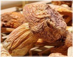 Dried mushroom Agaricus blazei 310 grams, Himalayas Mushroom & Truffles #JOHNLEEMUSHROOM