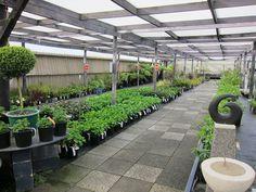 Indoor garden / nursery