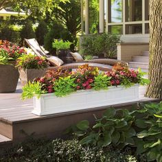 Window boxes fit well in small spaces too. The white coloration of this window box demands attention in this natural setting. ColorBlaze coleus and a variety of impatiens also help bright up this shady spot with a combination we call 'Sophisticated'.