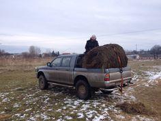Hooi halen voor de paarden