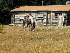 48 Best Top Dude Ranches Images In 2013 Ranch Adventure