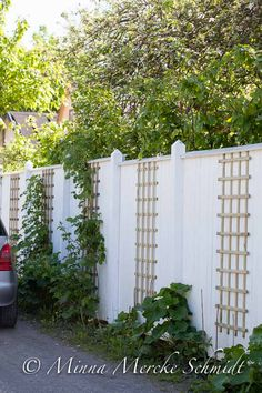 Garden Privacy, Garden Trellis, Garden Gates, Dream Garden, Home And Garden, Backyard Fences, Small Patio, Garden Inspiration, Beautiful Gardens