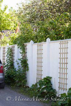 blomsterverkstad | Livet med trädgård, uterum och växter Garden Privacy, Garden Trellis, Garden Gates, Dream Garden, Home And Garden, Backyard Fences, Garden Inspiration, Beautiful Gardens, Plank