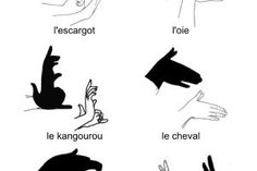 fiches et pdf à télécharger Plus ~ Nutty Goat Ideas Shadow Puppets With Hands, Diy For Kids, Crafts For Kids, Diy Crafts, Hand Shadows, Shadow Art, Kids And Parenting, Activities For Kids, Sketches