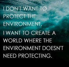 I don't want to protect the environment. I want to create a world where the environment doesn't need protecting.
