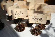 Use scrapbook paper that looks like wood to print the place cards. Maybe put the names in an oval that is on top of the wood pattern. Or leaf shapes.