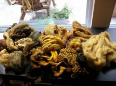Amazing BLOG for natural dying with mushrooms!!!