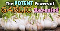 Eating a clove or two of fresh garlic a day may indeed keep the doctor away -- read more to find out why. http://articles.mercola.com/sites/articles/archive/2014/07/05/garlic-benefits.aspx