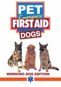 DVD full of up-to-date information and demonstrations to help you acquire emergency first aid skills. Reviewed by Kim.