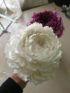 Between work kids and my huge garden I have been working on some peony tutorials. I'm slowly getting there so thought I might post where I have gotten to so far! These are freeform, no cutters or tools. My tutorials are available at... #Sugarflowers
