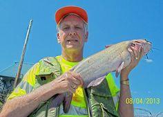1000 images about catfishing at cincinnati on pinterest for Fishing in cincinnati