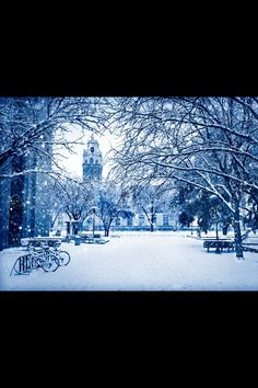 My gorgeous campus. Oh I love thee Texas Tech 2013
