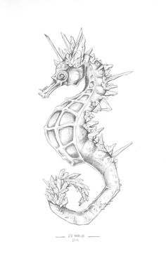 Seahorse Harbor jdunruh:This was a gift for Kelsey! Crystal Seahorse Pencil on paper, 8 x Seahorse Drawing, Seahorse Tattoo, Seahorse Art, Mermaid Tattoos, Seahorses, Creature Drawings, Animal Drawings, Underwater Drawing, Scratchboard Art
