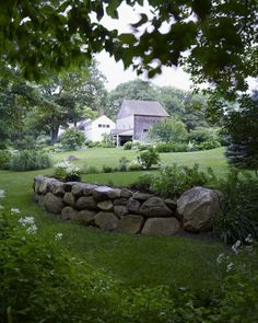 Lawn - The view from a far, wooded edge of the property shows off a healthy, organic lawn.