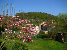 village en pleine nature
