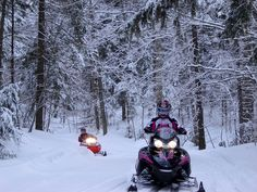 """Haliburton Forests 300 kilometers of well groomed trails through some of Ontario's most scenic wilderness are frequently referred to as """"Ontario's Snowmobiling Wonderland"""". Snow Conditions, Wilderness, Ontario, Wonderland, Trail, Wildlife, World, Outdoor, Into The Wild"""
